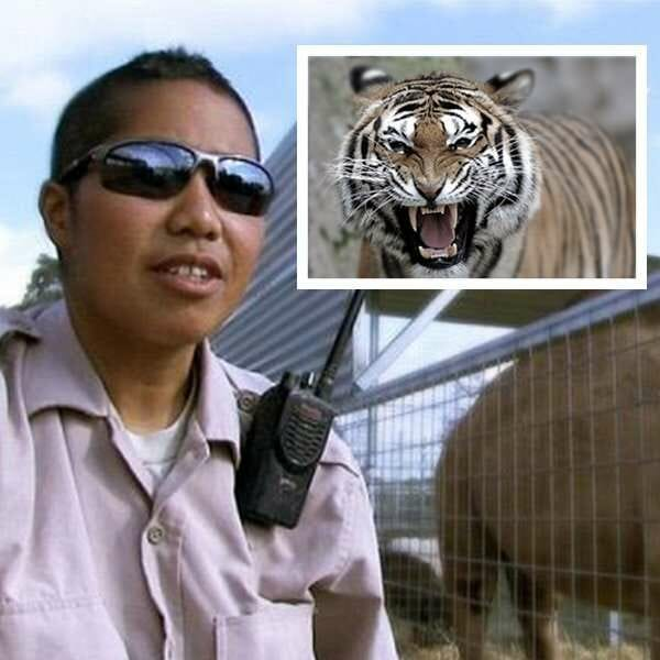 Tiger King Ad